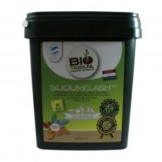 BioTabs Silicium Flash 9 Liter